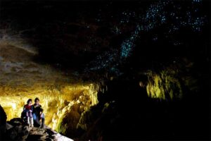 glowworms-cave