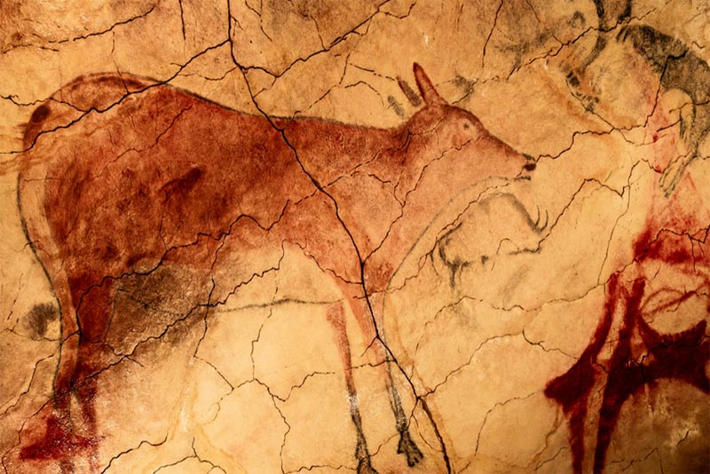 altamira-cave-oldest-cave-paintings