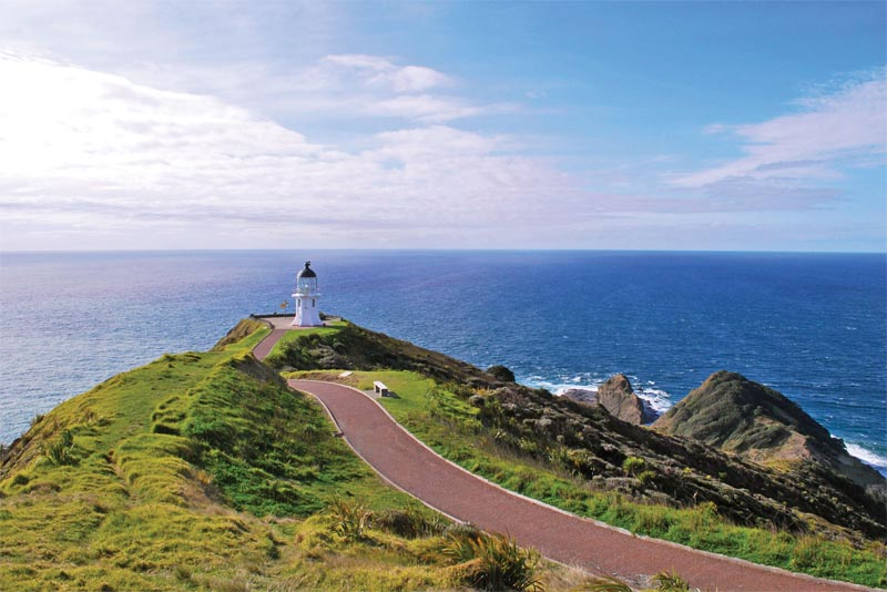 cape-reinga-beautiful-places-in-new-zealand