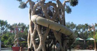 axel-erlandson-circus-trees-amazing-trees