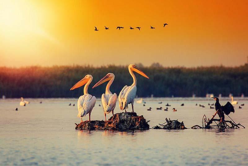 danube-delta-beautiful-places-in-romania