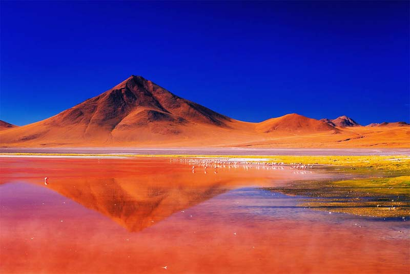 laguna-colorada-strangest-lake