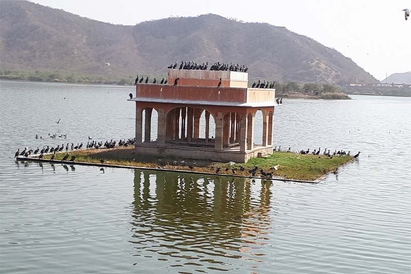 man-sagar-lake