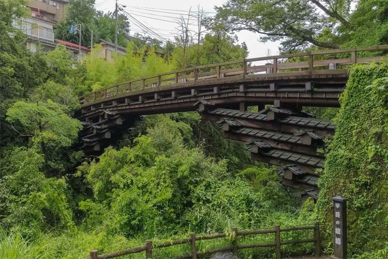 the-monkey-bridge
