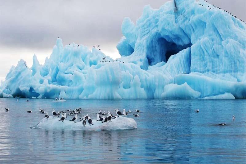 arctic-ocean-largest-ocean