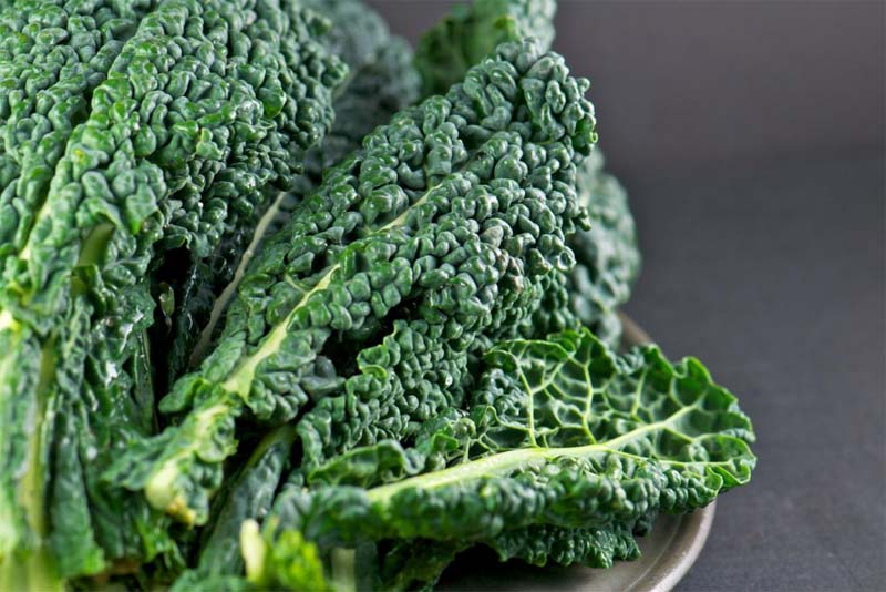 sharp-vision-green-leafy-vegetables