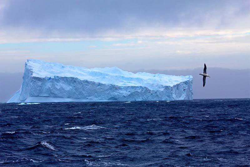 southern-ocean-largest-ocean