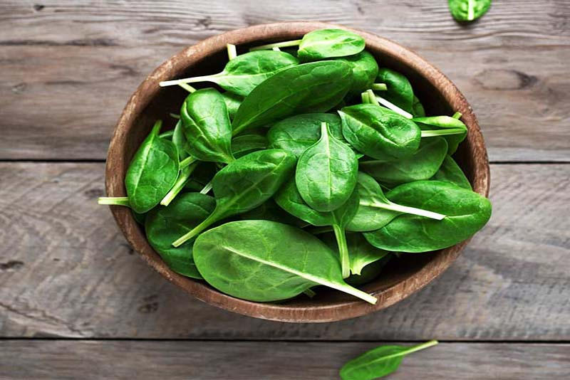 Spinach-Immune-System