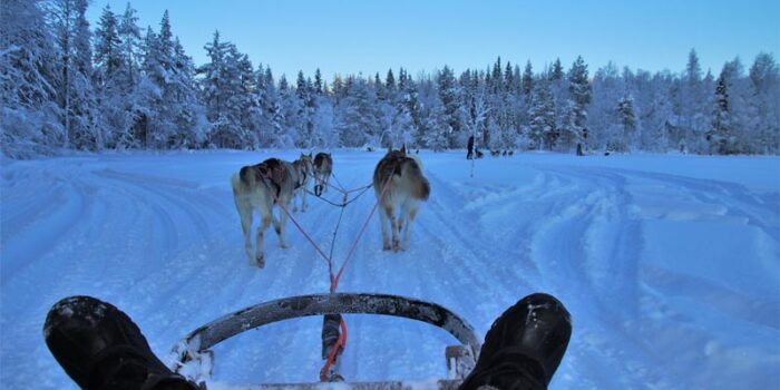 interesting-and-amusing-facts-about-finland