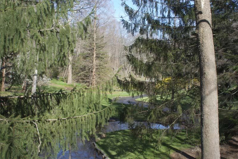 leonard-j-buck-garden